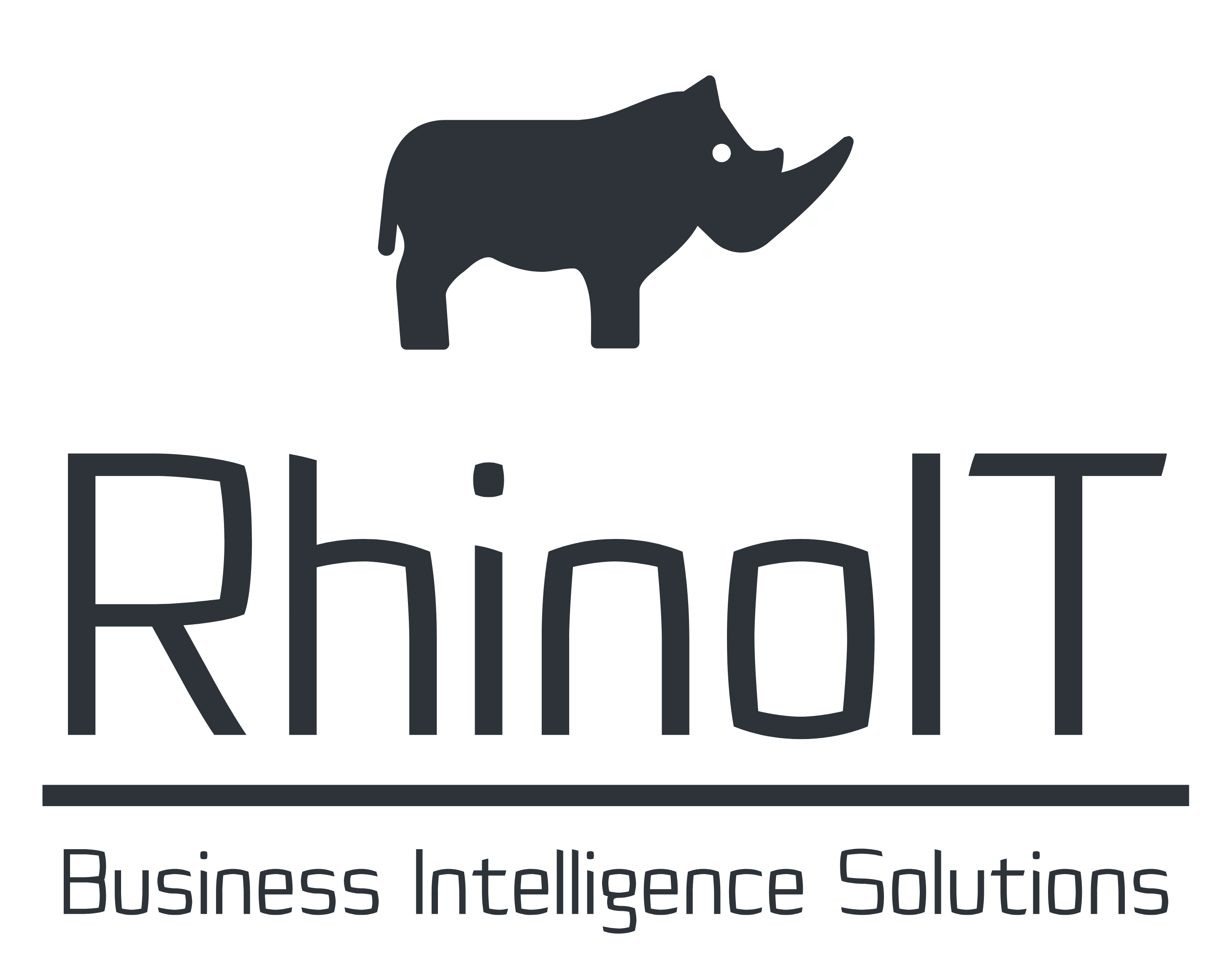 RhinoIT – Business Intelligence Solutions